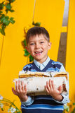 Boy with pile of firewood Stock Photography
