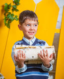 Boy with pile of firewood Stock Images