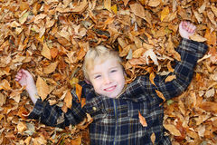 Boy in a pile of leaves Stock Photography