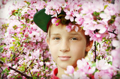 Boy Pink Blossoms Royalty Free Stock Images