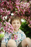 Boy Pink Blossoms Royalty Free Stock Photos