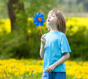 Boy with Pinwheel. In a Meadow of Dandelions Stock Image