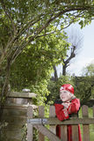 Boy In Pirate Costume Leaning On Garden Gate Stock Photo