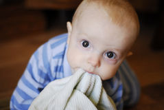 Boy in PJ's with blanket. Baby boy (7 months old) crawling while carrying a blanket in his mouth.  Big brown eyes, blue striped PJ's and light green blankie Stock Images