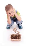 Boy and plant Royalty Free Stock Photo