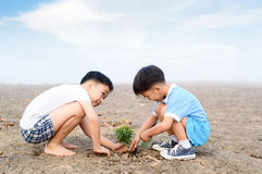 Boy planting on crack soil Royalty Free Stock Photography