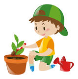 Boy planting tree in clay pot. Illustration Royalty Free Stock Photography