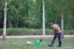 Boy planting young tree in autumn in a rubber boots. Autumn yard work. stock photos