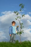Boy plants the tree Stock Photos