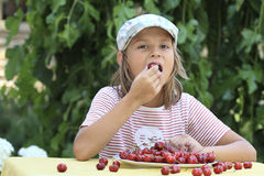 Boy and a plate of cherries. Portrait of a boy eat cherries Stock Photography