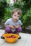 Boy with plate of strawberry. In garden Royalty Free Stock Photography