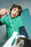 Boy play with cat by rope and mouse toy Royalty Free Stock Photos