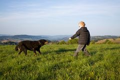 Boy play with dog Royalty Free Stock Photos