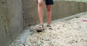 Boy play with elm seeds covering street stock video