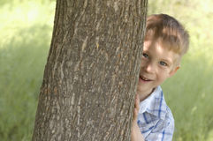 Boy play hide-and-seek Royalty Free Stock Photos