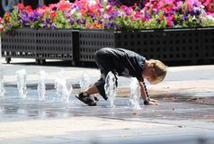 Boy play water when visit Sydney with family Stock Image