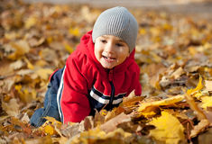 Boy played with autumn leaves Royalty Free Stock Photography