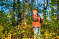 Boy playing in the autumn forest royalty free stock photos