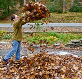 Boy playing with autumn leaves stock photography