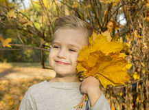 Boy playing with autumn leaves Royalty Free Stock Photos