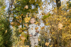 Boy playing with autumn leaves Stock Images