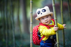 Boy playing in bamboo forest Stock Images