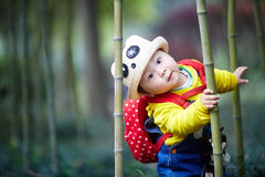 Boy playing in bamboo forest Stock Photo