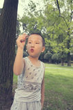 Boy playing cash plane Stock Photos