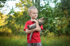 Boy playing with cat. Cute little boy playing with cat in summer park Stock Photo