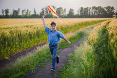 Boy playing with colorful kite on wheat field Stock Photos