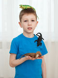 Boy playing with dinosaur toys Royalty Free Stock Photo