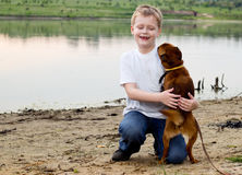 Boy playing with dog. Stock Photography