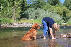 Boy playing with dog. Boy playing with golden retriever dog in a river Stock Images