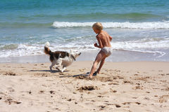 Boy playing dog. On the beach Stock Photos