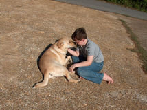 Boy playing with dog Royalty Free Stock Photos
