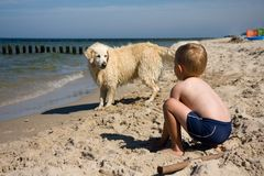 Boy playing with dog on beach. Small boy playing with a dog on a beach in summer day Royalty Free Stock Image