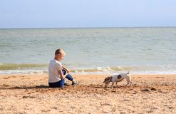 The boy is playing with Dog on the beach Royalty Free Stock Photo