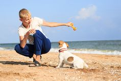 The boy is playing with Dog on the beach Stock Photography
