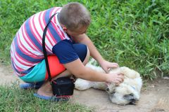 Boy playing with a dog royalty free stock photos