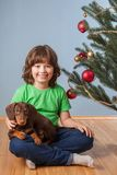 Boy playing with dog near the Christmas fir-tree Royalty Free Stock Photos