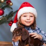 Boy playing with dog near the Christmas fir-tree.  stock photos