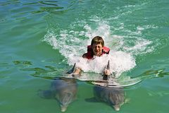 Boy playing with dolphins in the sea Stock Images