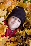 Boy playing in the foliage Royalty Free Stock Image