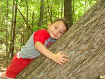 Boy playing in a forest Royalty Free Stock Images