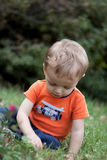 Boy playing in grass. Little toddler boy exploring in the grass in Summer Royalty Free Stock Photo