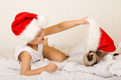 Boy playing with his cat on christmas eve Royalty Free Stock Photography