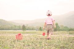 Boy  playing and holding gift box o on grass field in evening Stock Photo