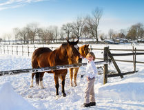 Boy playing with horses on a sunny winter day Stock Photos