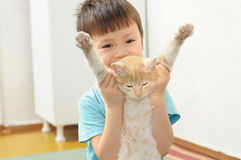 Boy playing with lazy ginger cat Royalty Free Stock Photo