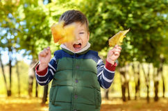 Boy playing with leaves. Little happy boy playing with leaves at autumn park Royalty Free Stock Photos